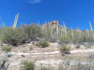 View from lower portion of Sabino Canyon